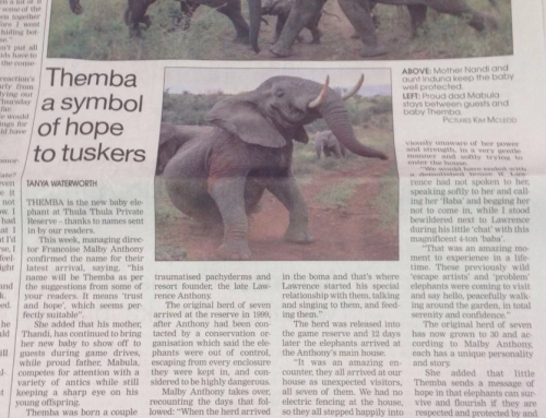 Themba a symbol of hope to tuskers