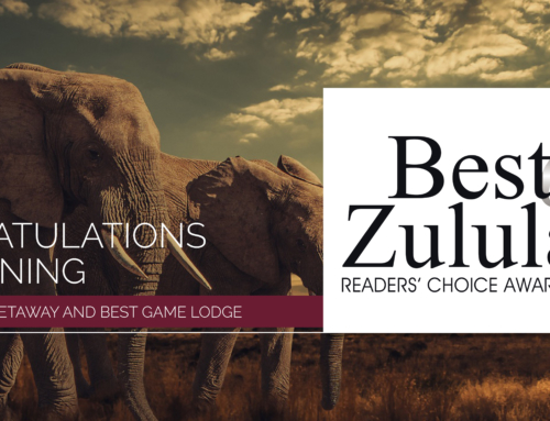 Best Weekend Getaway & Best Game Lodge